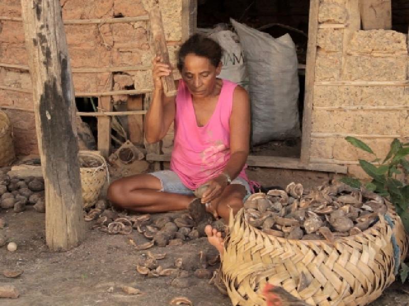 Gravação do documentário Quebradeira, de Osman Silvino, de Igarapé do Meio, no Maranhão.